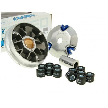 Variateur Polini Speed Control Honda Bali / SFX / SKY / X8R / Shadow