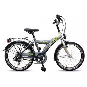 "Kinderfiets 20"" Golden Lion Boys 6V Bright Aluminium / Titanium"